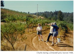 CRM Vineyard 1988